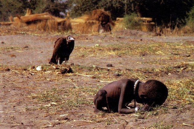 Abutre à espreita de criança vítima da guerra e da fome no Sudão, 1993. Fotografia vencedora do prêmio Pulitzer. Foto: Kevin Carter